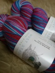 Elsa and Anna in Sport Sock by Mush Stash Yarns