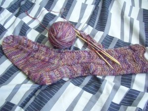 "Broad Ripple Sock in Malabrigo ""Archangel"""